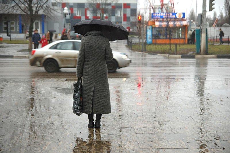 Январь 2014 в Белгороде: В ожидании зимы, фото-2