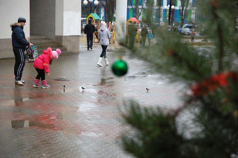 Январь 2014 в Белгороде: В ожидании зимы, фото-8