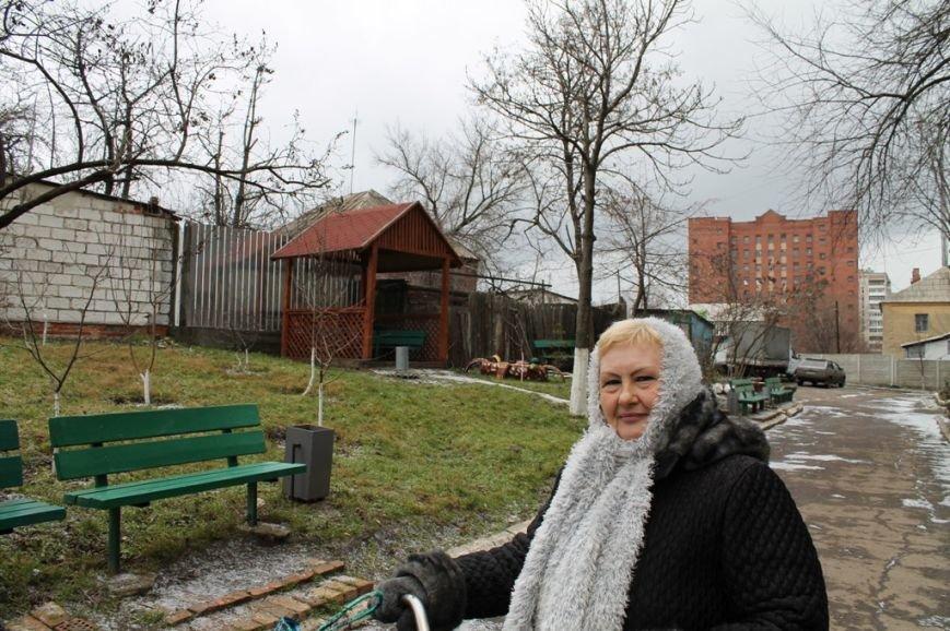 Все началось с «Уютного дворика»: в артемовском дворе высадили фруктовый сад, фото-2