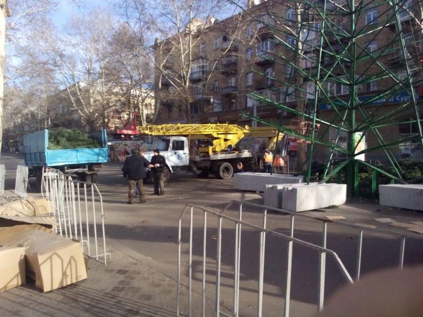 Праздники закончились — в Николаеве собирают главную городскую елку (ФОТО), фото-1
