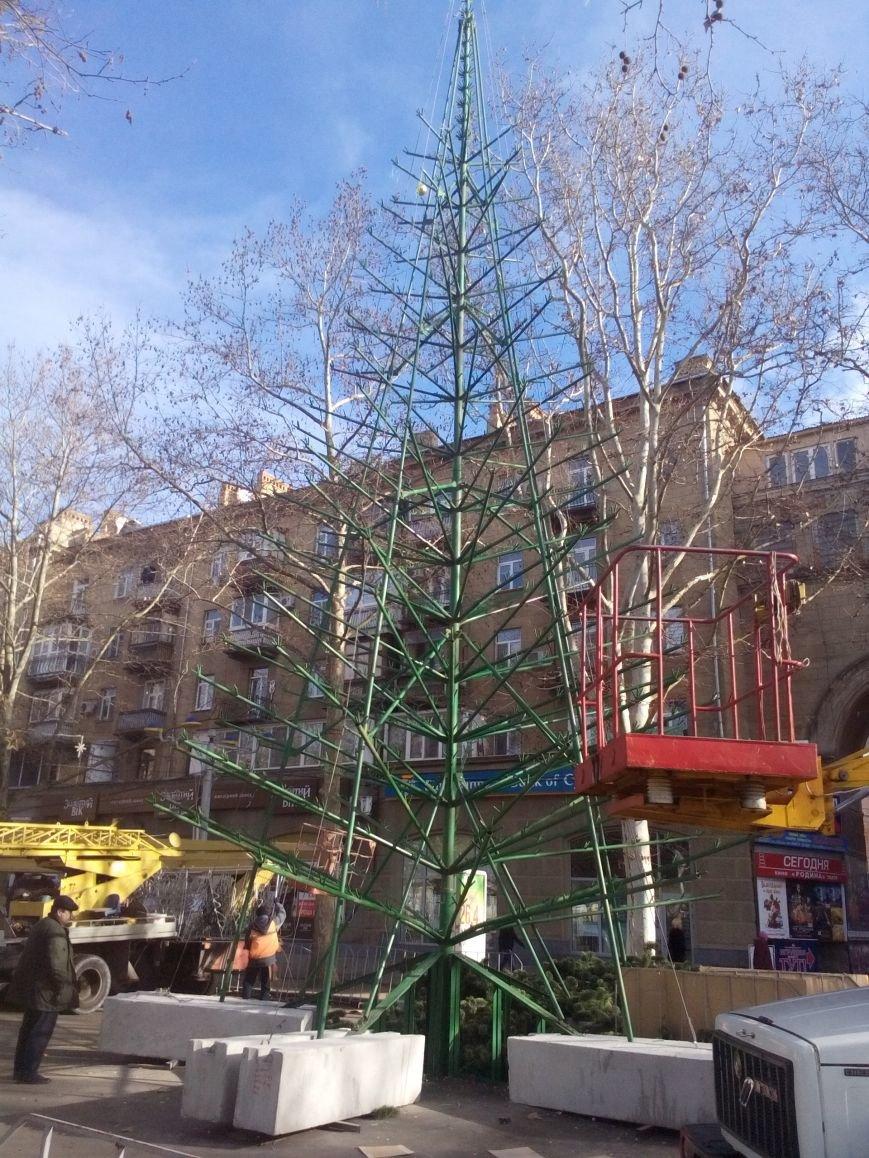 Праздники закончились — в Николаеве собирают главную городскую елку (ФОТО), фото-3