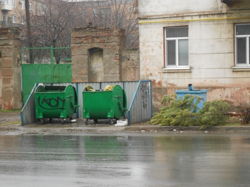 На мариупольских улицах лежат зеленые красавицы  (ФОТО), фото-4