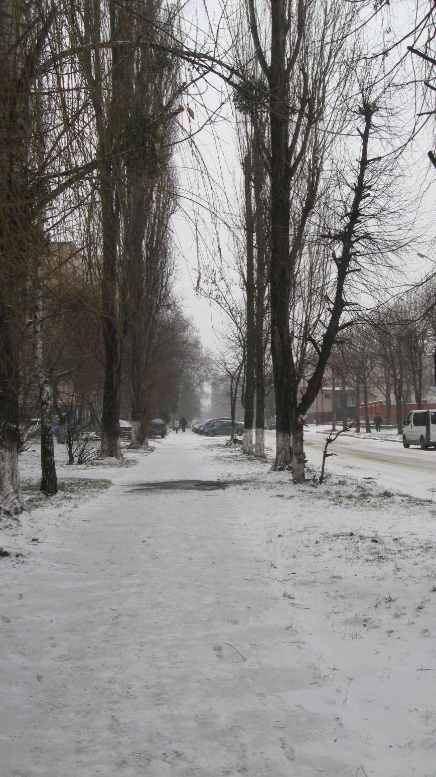 Житомир накрило...снігом та приморозками, фото-4