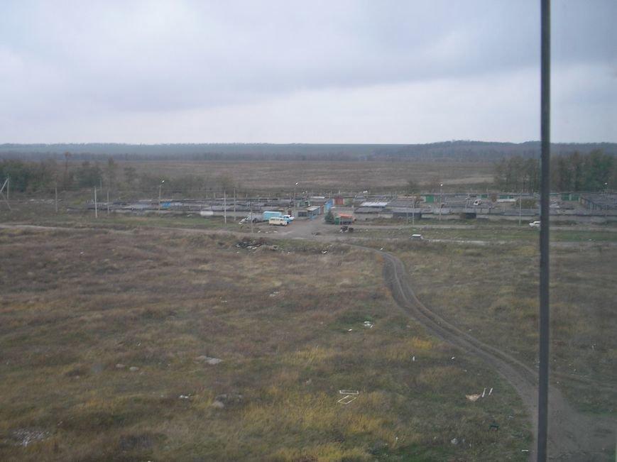 Поле 2005 1