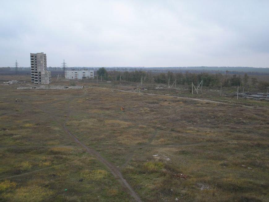 Поле 2005