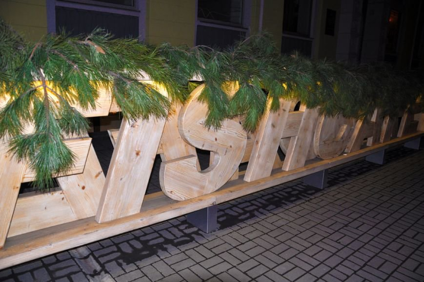 В Запорожье активисты пикетировали кафе «семьи Пеклушенко» (ФОТО), фото-3