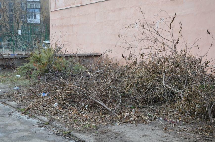 В Мариуполе выброшенные елки превратились в горы мусора (Фотофакт), фото-1