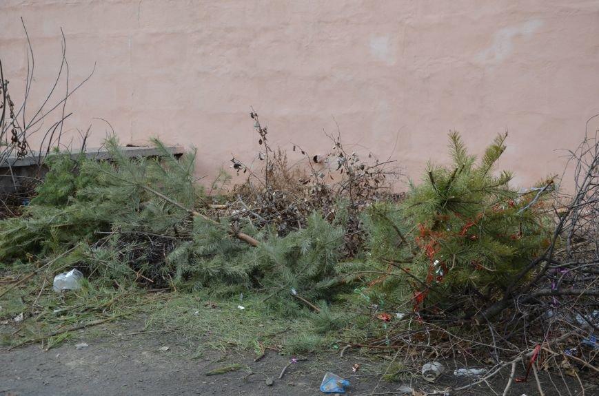 В Мариуполе выброшенные елки превратились в горы мусора (Фотофакт), фото-2