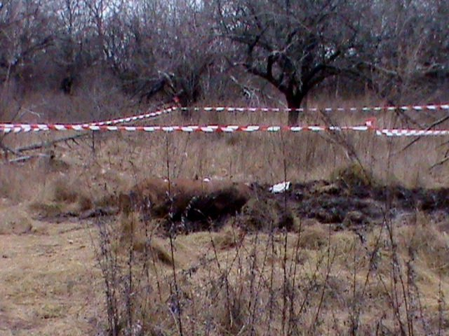 Сумська область: знешкоджено 22 боєприпаси часів війни, серед них 4 авіабомби (ФОТО), фото-2