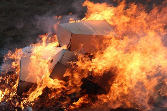 Інквізиція на Житомирщині: на вогні спалювали коноплю та мак, фото-3