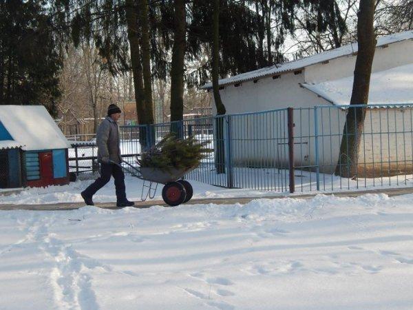 зима в зоопарке2
