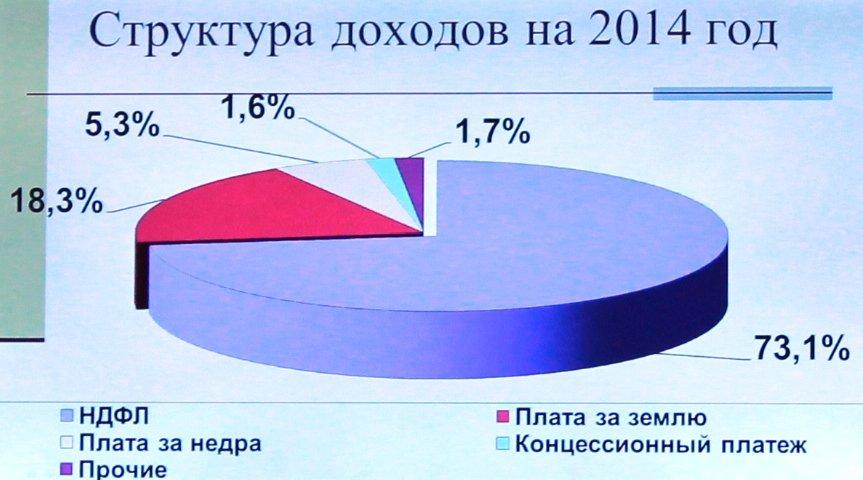В Артемовске приняли бюджет на 2014-й год, фото-1