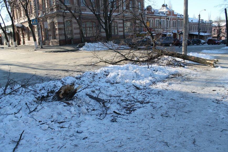 Загадочная авария в центре Сум: сломано дерево и столб (ФОТО), фото-2