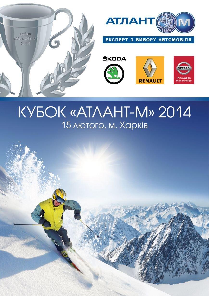 Лыжник-01-2