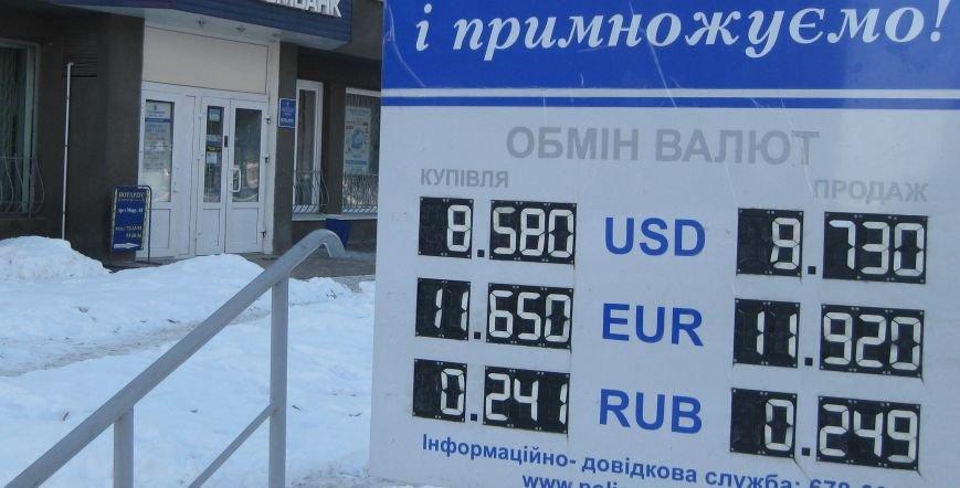 В Чернигове образовался «зеленый дефицит», фото-3