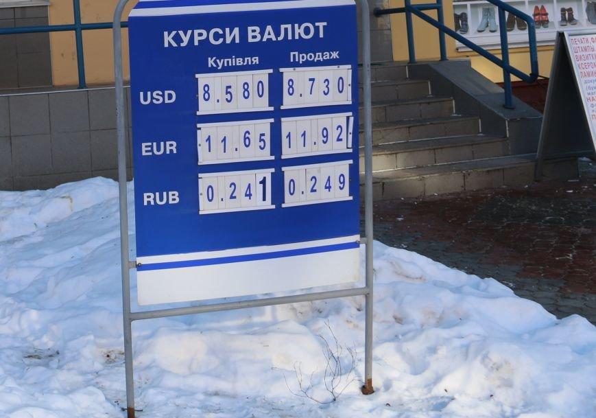В Чернигове образовался «зеленый дефицит», фото-1