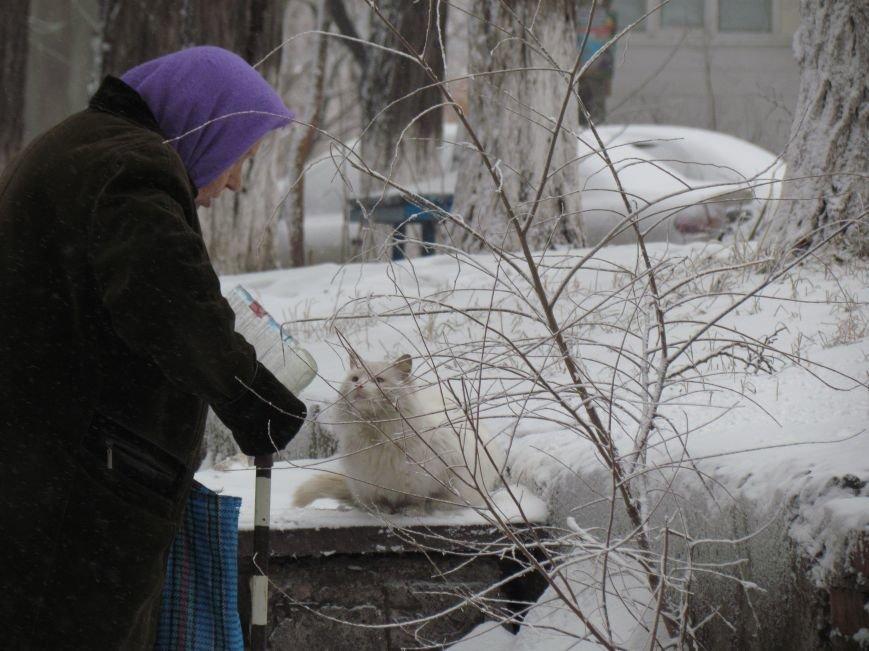 Четверговый объезд  в снежном плену: в Мариуполе  коммунальщики и журналисты забуксовали на внутридворовой дороге (Фоторепортаж), фото-9