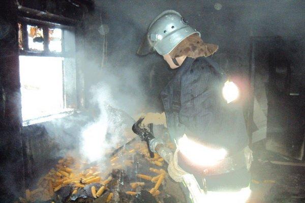 На Тернопільщині бабуся згоріла у літній кухні (фото), фото-1