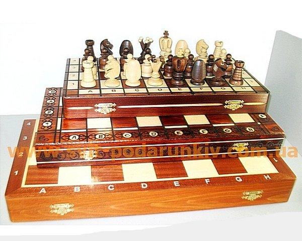 шахматы общая_s