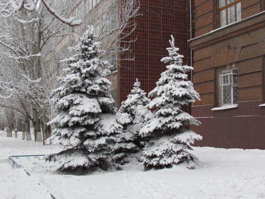 Мариупольцы наслаждаются последними днями зимней сказки (ФОТО), фото-10