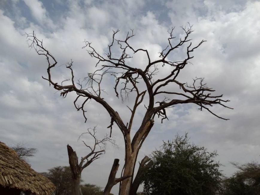 Бывшие беспризорники из Мариуполя шокированы жизнью в Африке (ФОТО), фото-6