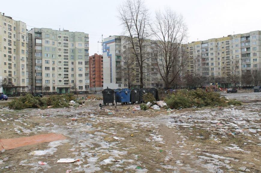 Мэра Сум проигнорировали: горы елок не вывезли (ФОТО), фото-2