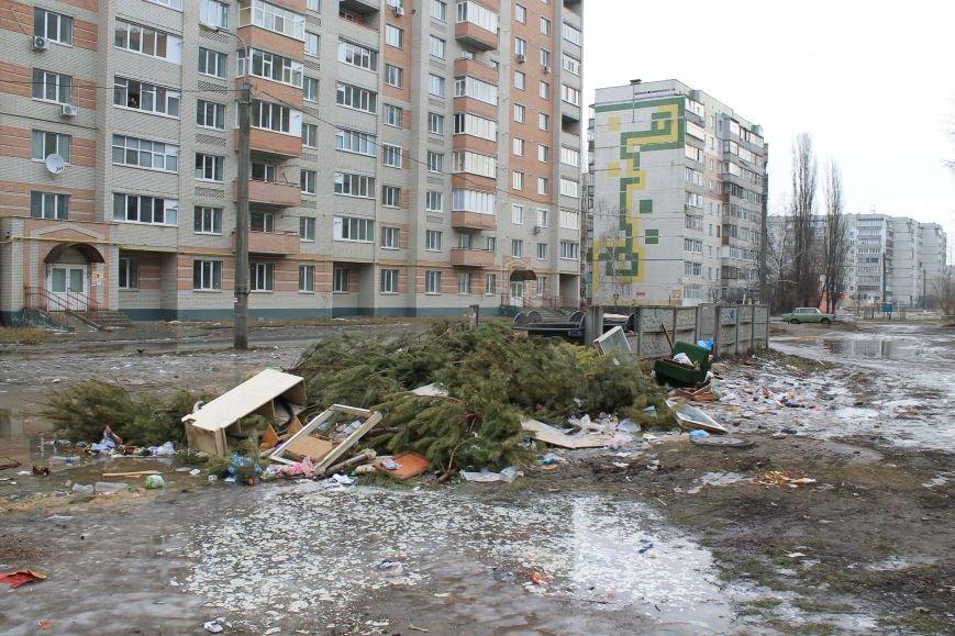 Мэра Сум проигнорировали: горы елок не вывезли (ФОТО), фото-1