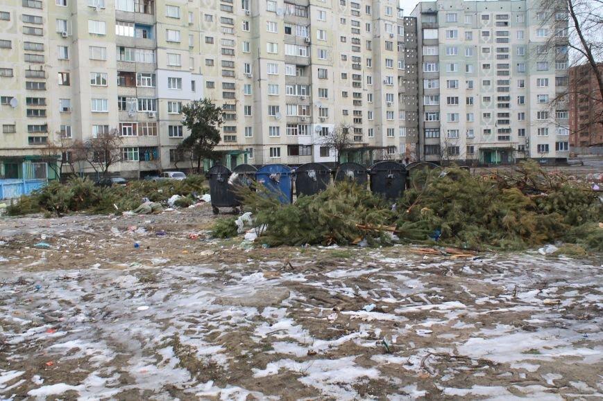 Мэра Сум проигнорировали: горы елок не вывезли (ФОТО), фото-3