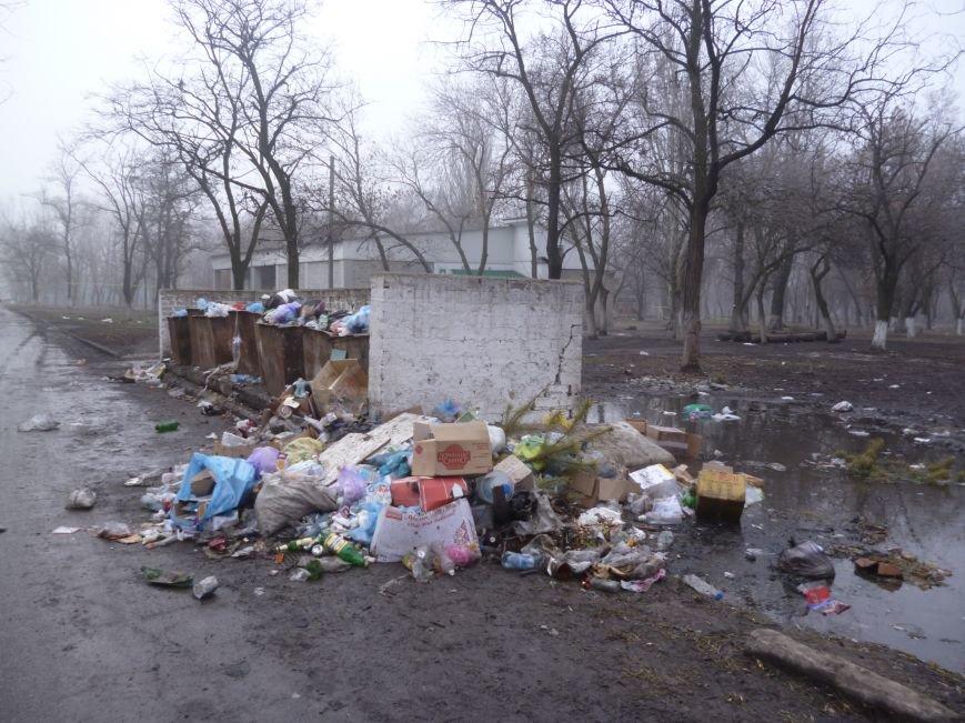 Дилемма в Родинском: или мусор каждый день вывозить, или зарплату сотрудникам платить, фото-1