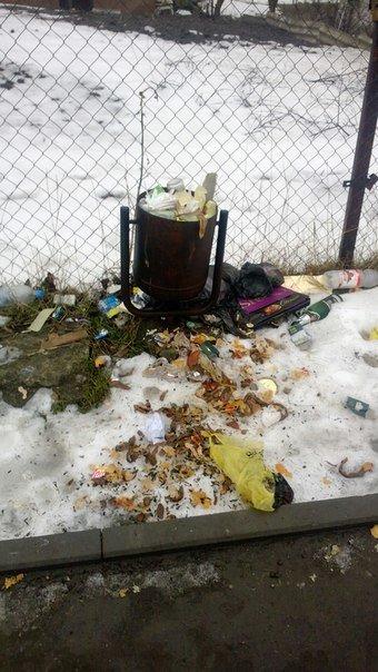 На Тернопільщині майже місяць місто потопає у смітті (фото), фото-1