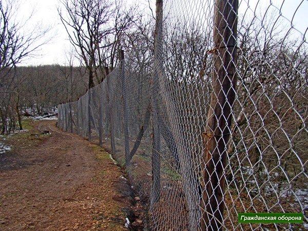 Новую дачу Януковича в крымском заповеднике обнесли забором и вырубили рядом деревья (ФОТО), фото-6