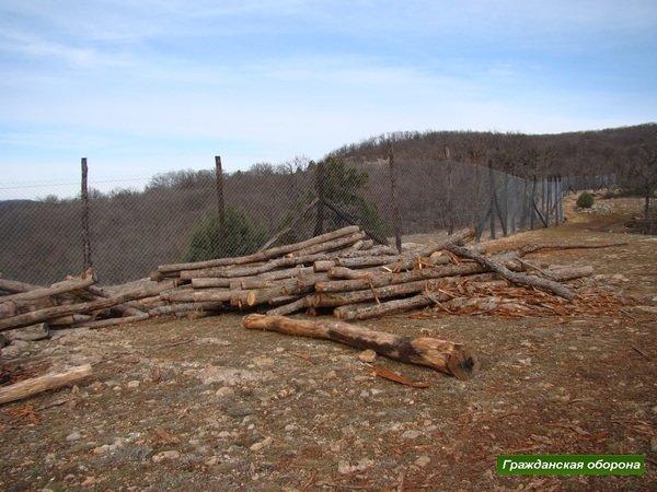 Новую дачу Януковича в крымском заповеднике обнесли забором и вырубили рядом деревья (ФОТО), фото-1