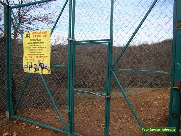Новую дачу Януковича в крымском заповеднике обнесли забором и вырубили рядом деревья (ФОТО), фото-8