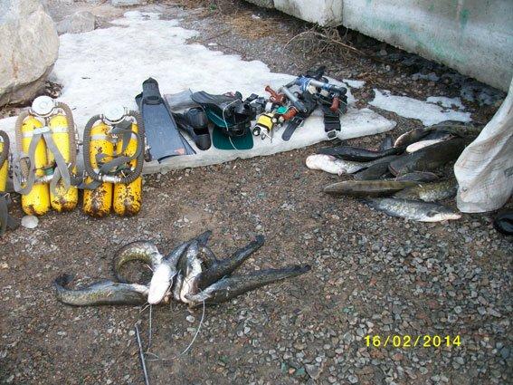 В Кременчугском районе задержаны браконьеры-дайверы (ФОТО), фото-2