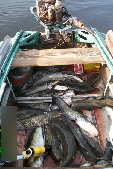 В Кременчугском районе задержаны браконьеры-дайверы (ФОТО), фото-1