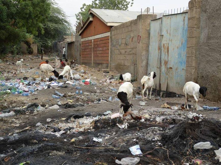 Мариупольцы в Африке спасли детей от смертельно опасного клеща (ФОТО), фото-8