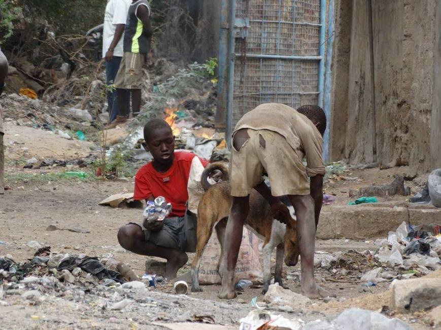Мариупольцы в Африке спасли детей от смертельно опасного клеща (ФОТО), фото-11