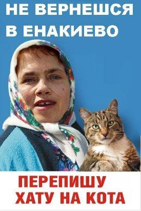 На Днепропетровщине совершено вооруженное покушение на автора мейнстрима  «Переписала хату на кота», фото-3
