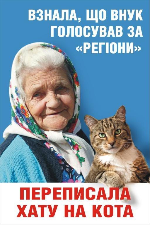 На Днепропетровщине совершено вооруженное покушение на автора мейнстрима  «Переписала хату на кота», фото-2