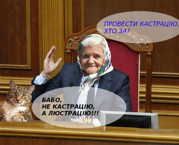 На Днепропетровщине совершено вооруженное покушение на автора мейнстрима  «Переписала хату на кота», фото-5