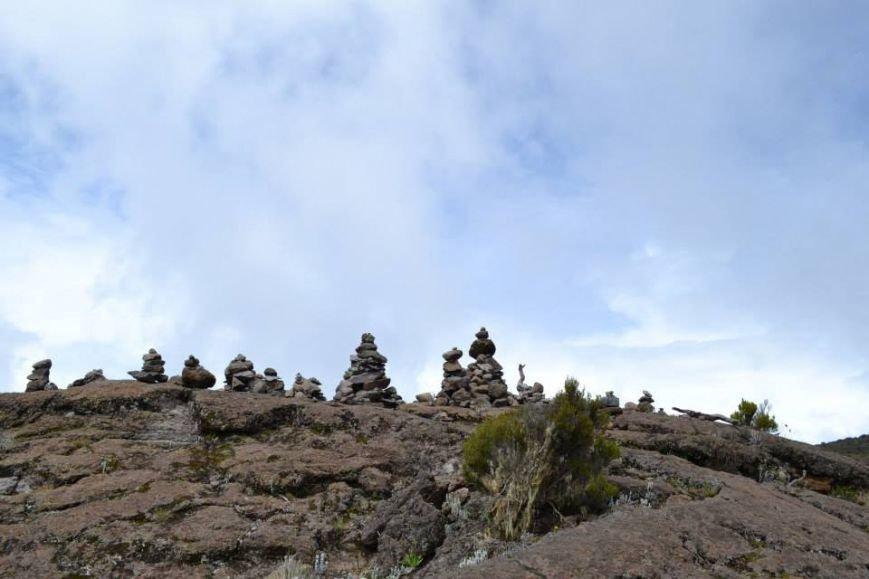 Мариупольцы вошли в африканские облака и любовались Килиманджаро с горы-зебры (ФОТОРЕПОРТАЖ), фото-13