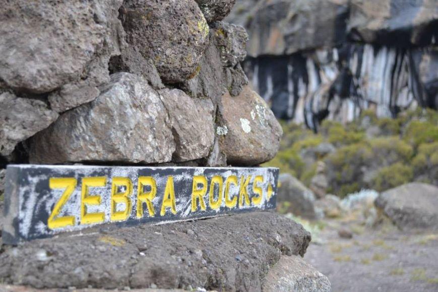 Мариупольцы вошли в африканские облака и любовались Килиманджаро с горы-зебры (ФОТОРЕПОРТАЖ), фото-5