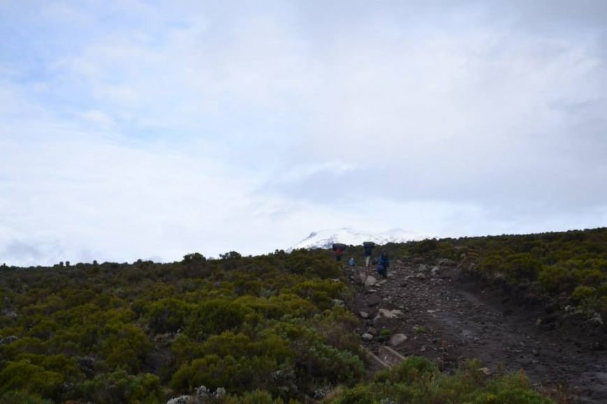 Мариупольцы вошли в африканские облака и любовались Килиманджаро с горы-зебры (ФОТОРЕПОРТАЖ), фото-4