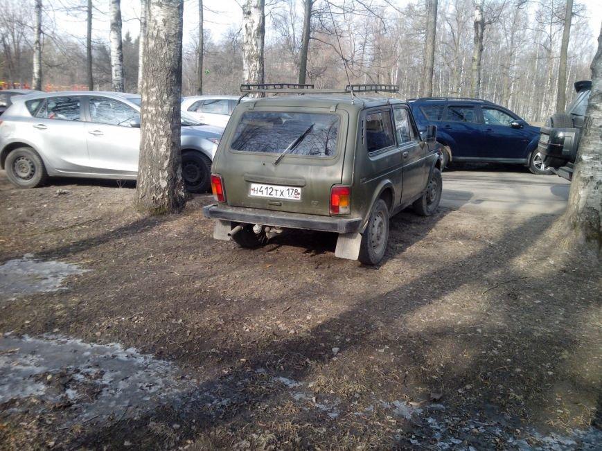 нарушения ПДД при парковке в городе Павловск