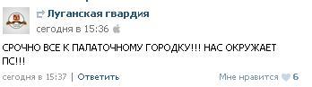 «Ни шагу назад»  - в Луганске митинговали за Россию (ФОТО), фото-2