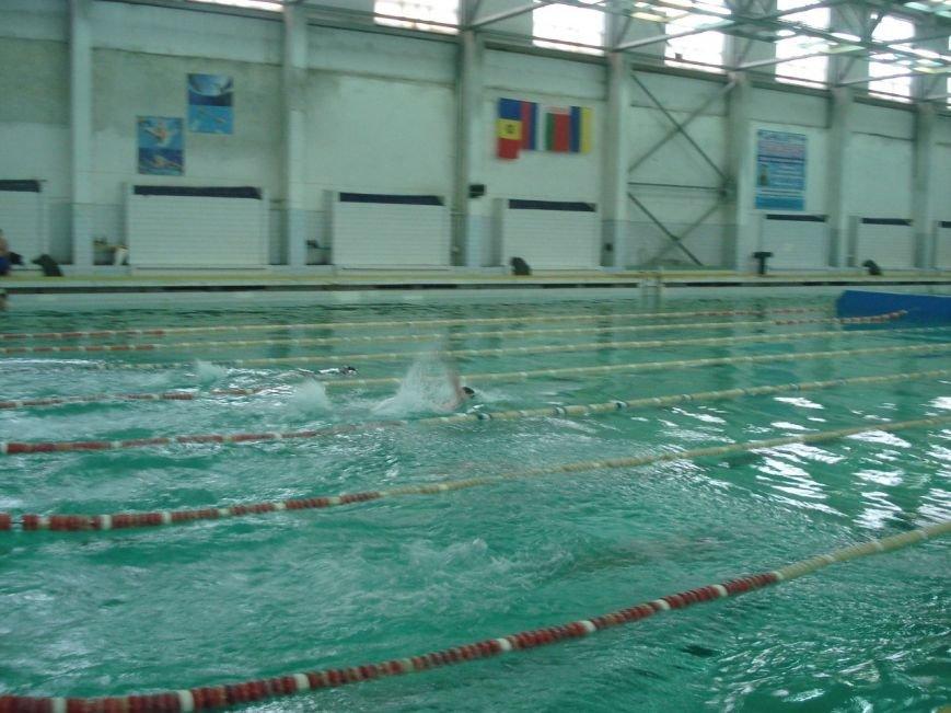 В спорткомплексе ДНУ им. О. Гончара прошла спартакиада по плаванию (ФОТО), фото-1
