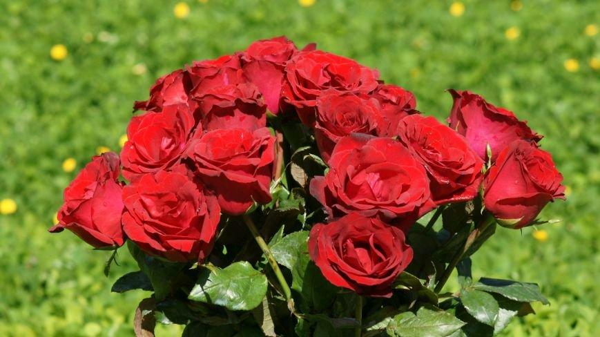 Неужели розы по 30 грн. и  еще бесплатная доставка?!?!, фото-2