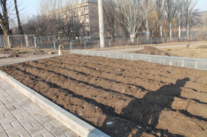 В Артемовске на новой аллее воруют розы, фото-1