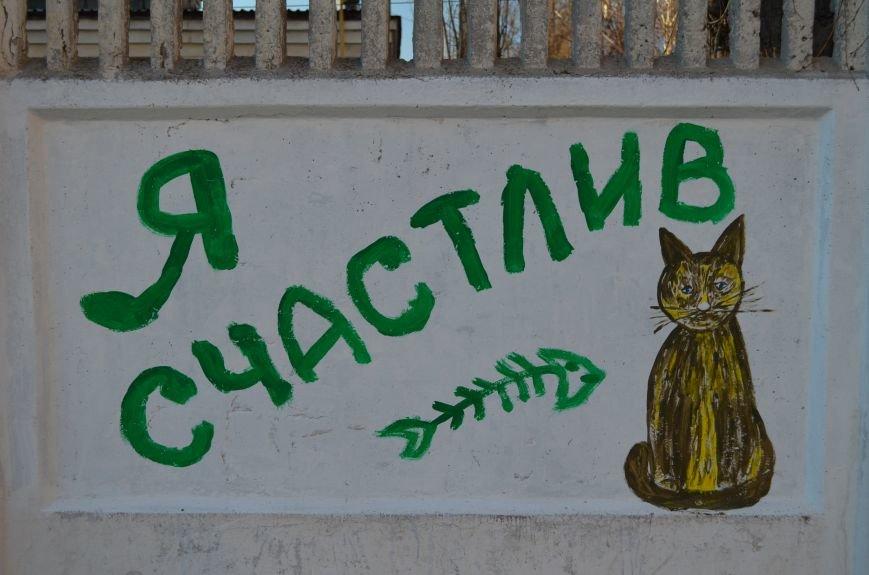 ФОТОФАКТ: Симферопольцам с граффити рассказали о жирафе в галстуке и счастливом коте, фото-7