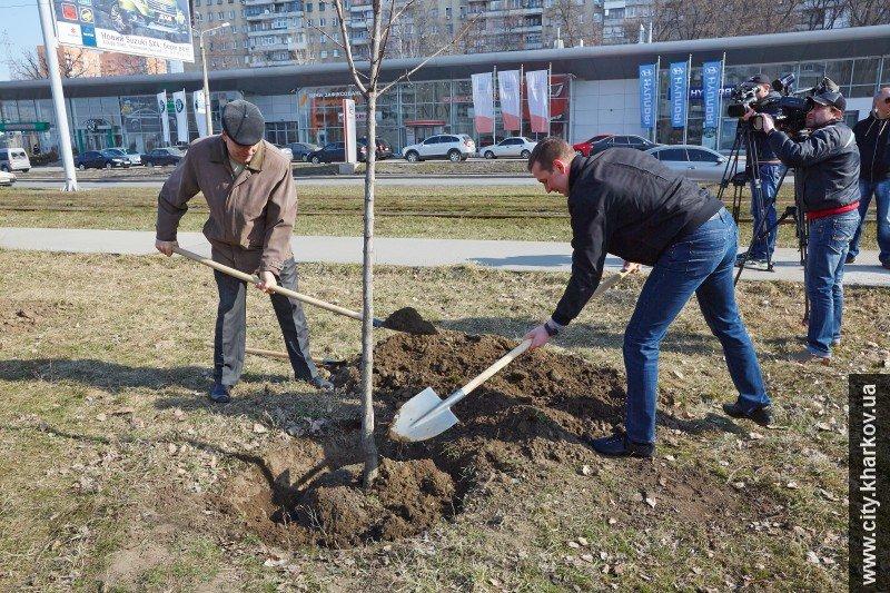 В Харькове высадили почти полсотни молодых деревьев (ФОТО), фото-1